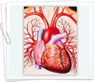 Causes and treatments for heart attack