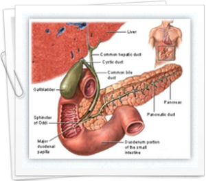 How to manage gallbladder cancer successfully