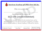 Healthcare Provider CPR, CPR for Healthcare Providers, CPR Healthcare Provider and BLS for Healthcare Providers