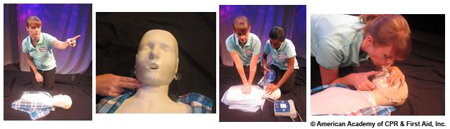 Health Care provider cpr summary,activation of EMS,check pulse,chest compression,mask to mouth breathing